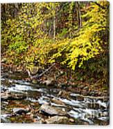 Autumn Elk River Canvas Print
