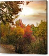 Autumn Hues Canvas Print