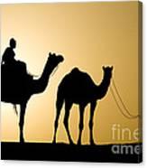 Camel Caravan, India Canvas Print