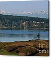 Chambers Bay Golf Course - University Place - Washington Canvas Print