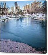Charlotte North Carolina Marshall Park In Winter Canvas Print