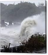 Coastal Wave During Typhoon Usagi Canvas Print