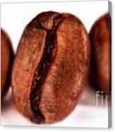 3 Coffee Beans Canvas Print