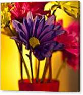 Daisies In A Vase On Shelf Canvas Print