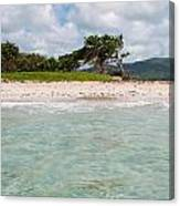 Deserted Beach At Vieux Fort Canvas Print