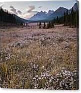 Engadine Meadow Canvas Print