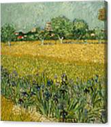 Field With Flowers Near Arles Canvas Print