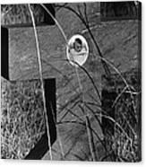 Film Noir Dana Andrews Linda Darnell Fallen Angel 1945 Child's Grave Ghost Town Golden Nm 1972 Canvas Print