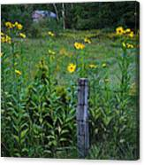 Green Acres Canvas Print