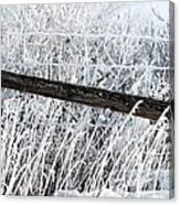 Hoar Frost On The Fence Canvas Print