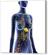 Immune System, Artwork Canvas Print