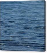 Lake Ripples Canvas Print