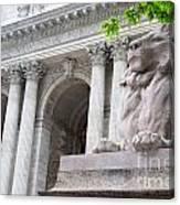 Lion New York Public Library Canvas Print