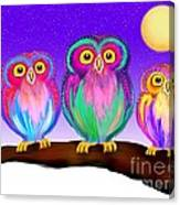 3 Little Owls In The Moonlight Canvas Print