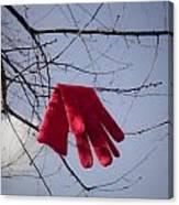 Lost Glove Canvas Print
