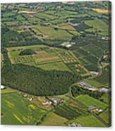 Loughgall Orchards, Armagh Canvas Print
