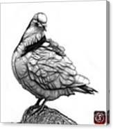Pink Pigeon Pop Art 5516 - Fs - Bb -  Modern Animal Artist James Canvas Print