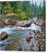 Sauk River Canvas Print