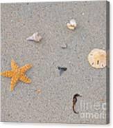 Sea Swag - Natural Canvas Print