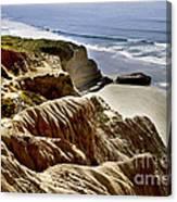 Torrey Pines State Park - California Canvas Print