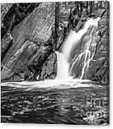 True's Brook Gorge Water Fall Canvas Print