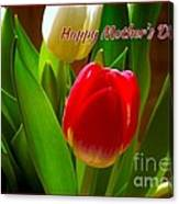 3 Tulips For Mother's Day Canvas Print