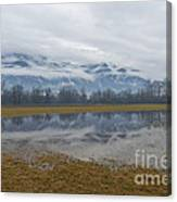 Water Puddle Canvas Print
