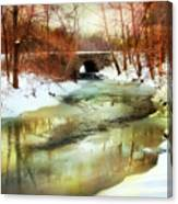 Winter Waters Canvas Print