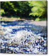 The Stream In Mountain Canvas Print