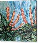Mann Flowers Canvas Print