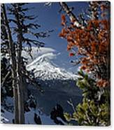Mt Hood From Lookout Mtn Canvas Print