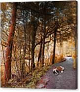 3287 Canvas Print