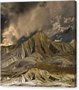 3568 Canvas Print