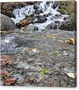 Alaskan Waterfall Canvas Print