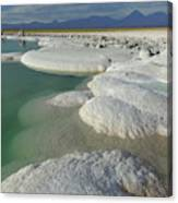 Atacama Salt Lake Near San Pedro De Canvas Print