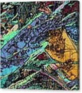 Blueschist Canvas Print