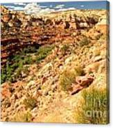Calf Creek Falls Canyon Canvas Print