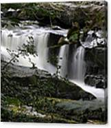 Clare Glens  Canvas Print