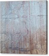 Close-up Of A Metal Wall Surface Canvas Print