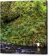 Columbia River Gorge, Oregon, Usa Canvas Print