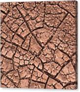 Cracked Dry Clay Canvas Print