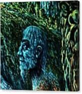 Detail From Shaman Canvas Print