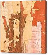 Drainpipe Canvas Print