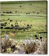 Environmental Tierra Del Fuego -- Canvas Print