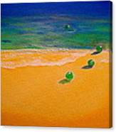 4 Glass Balls Canvas Print