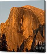 Half Dome, Yosemite Np Canvas Print