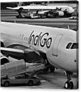 Indigo Aircraft Getting Ready In Changi Airport Canvas Print