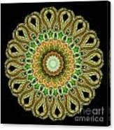 Kaleidoscope Ernst Haeckl Sea Life Series Canvas Print