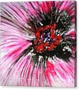 Mannflowers Canvas Print