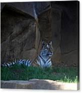 Riverbanks Zoo Columbia Sc Canvas Print